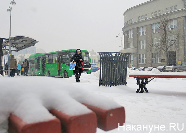 снег, снегопад, скамейка, остановка(2019)|Фото: Накануне.RU