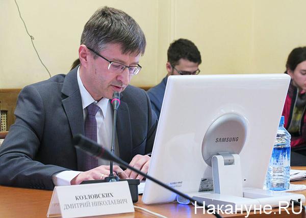Совещание по экологической обстановке, Дмитрий Козловских(2019)|Фото: Накануне.RU