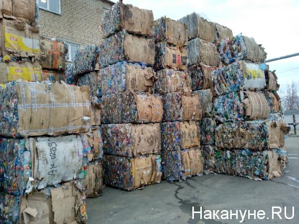 переработка мусора, пластик,(2019)|Фото: Накануне.RU