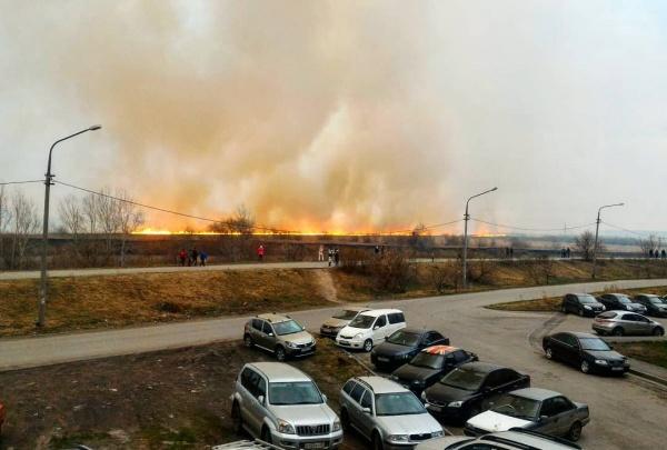 пожар, огонь, зарево, поля(2019)|Фото:vk.com Интересное в Кургане