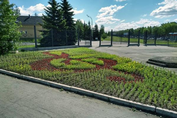 посадка цветов в Дзержинском районе Нижнего Тагила(2019)|Фото: uralvagonzavod.ru
