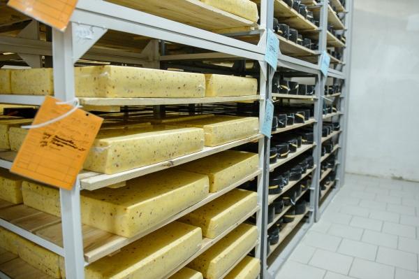сыр, завод, сыроделие, производство, апк(2019)|Фото:пресс-служба правительства Воронежской области