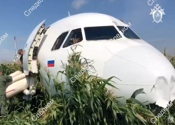 Airbus А321 Уральские авиалинии(2019)|Фото:youtube.com|Следственный комитет России