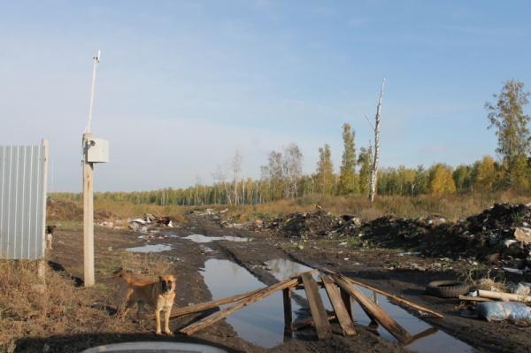 поселок Бродокалмак Красноармейский район,(2019)|Фото: ОНФ Челябинская область