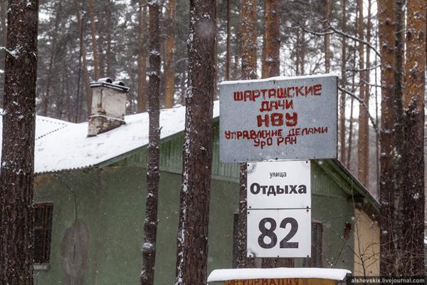 Шарташские дачи Уральского отделения РАН(2019)|Фото: Андрей Альшевских