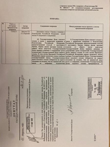 Поправка Александра Карелина в Конституцию.(2020)|Фото: t.me/webstrangler