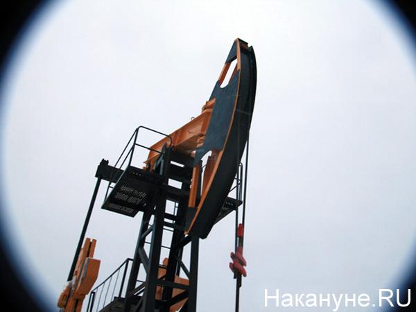 Нефть(2020)|Фото: Накануне.RU