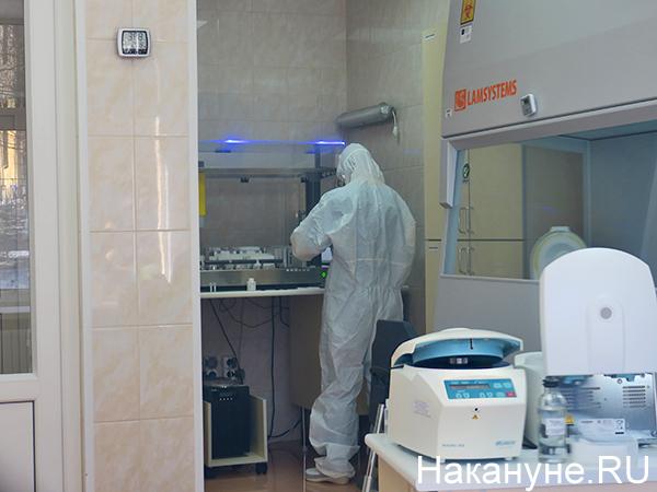 Лаборатория, где проводится проверка на коронавирус в Екатеринбурге(2020)|Фото: Накануне.RU