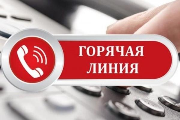 горячая линия, коллаж, телефон(2020)|Фото: пресс-служба правительства Вологодской области