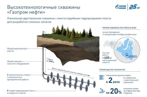 (2020)|Фото: Газпромнефть-Ноябрьскнефтегаз