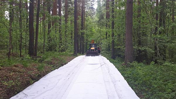 Благоустройство Шарташского лесопарка(2020) Фото: све.рф