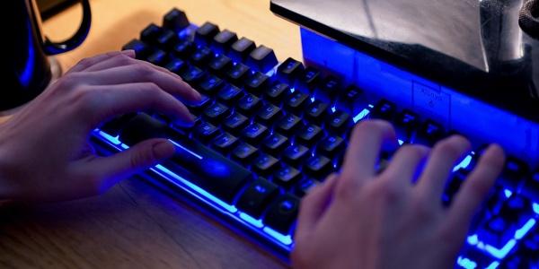 клавиатура, компьютер, дистанционное обучение, удаленная работа(2020)|Фото: mos.ru/Евгений Самарин