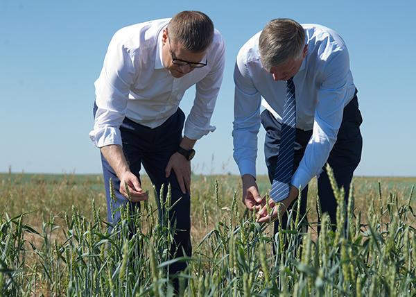 Алексей Текслер провел совещание с представителями аграрной отрасли в связи с почвенной засухой(2020) Фото: Пресс-служба губернатора Челябинской области