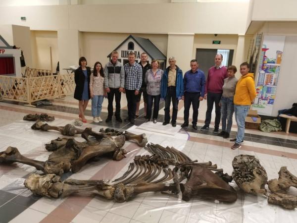 Экспедиция, мамонт, Сеяха(2020)|Фото: Научный центр изучения Арктики