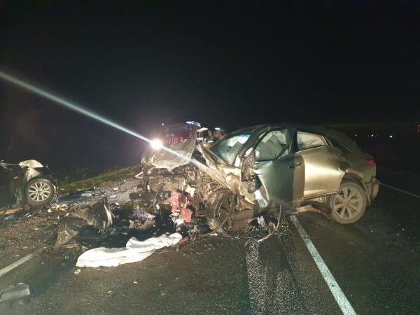 Авария, четверо погибших, объезжали кабана, Исетский район, Тюменская область(2020)|Фото: УГИБДД по Тюменской области