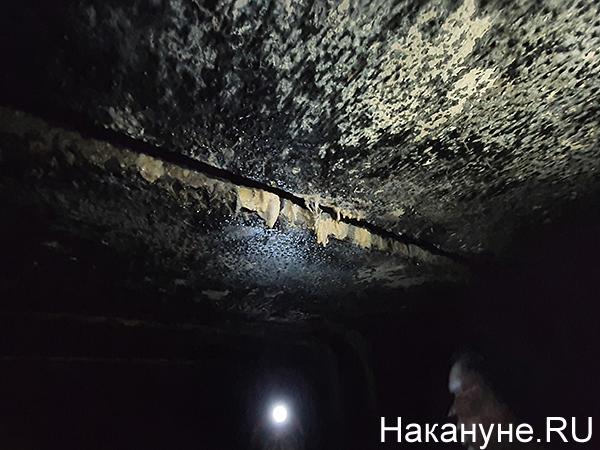 Подземелья Екатеринбурга, сталактиты(2020)|Фото: Накануне.RU