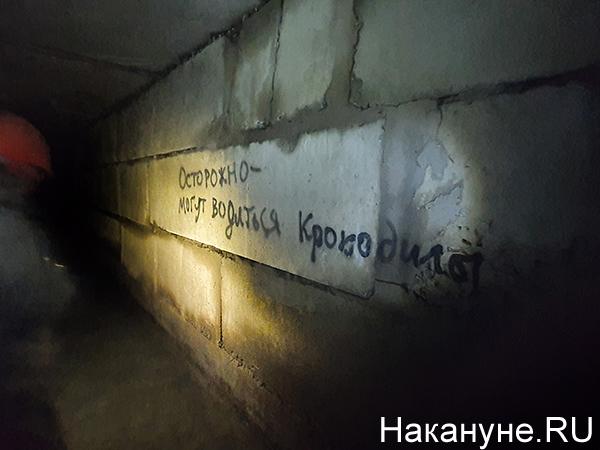 Подземелья Екатеринбурга, осторожно крокодилы(2020)|Фото: Накануне.RU