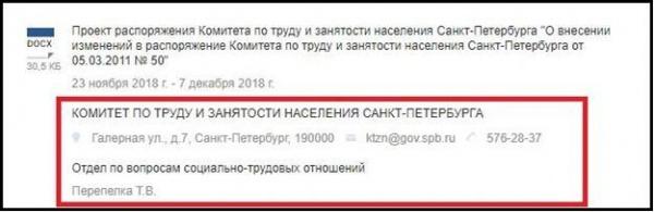 скан, распоряжение , проект, санкт-петербург, лп(2020)|Фото: скан, распоряжение , проект