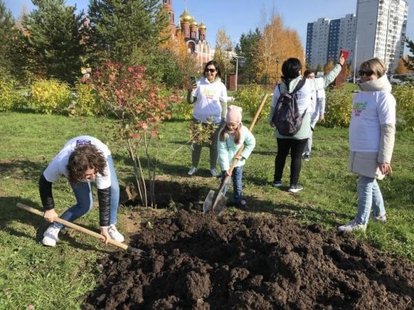 нижневартовск, озеленение,микрорайон, благоустройство, посадка деревьев(2020) Фото: пресс-служба администрации Нижневартовска