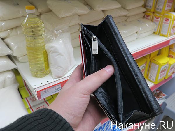 Пустой кошелек, продукты(2020)|Фото: Накануне.RU