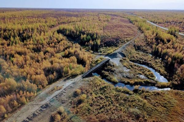 501 стройка, трансполярная магистраль, рельсы, мост(2020)|Фото: Алексей Дементьев | @dementev_aleksey.v
