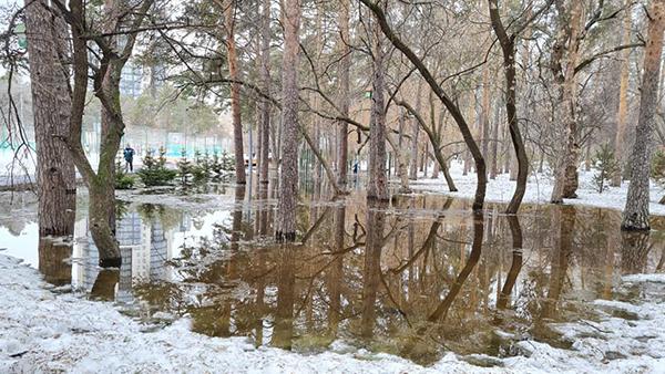 Подтопление в Зеленой роще(2021)|Фото: facebook.com/vladimir.zlokazov
