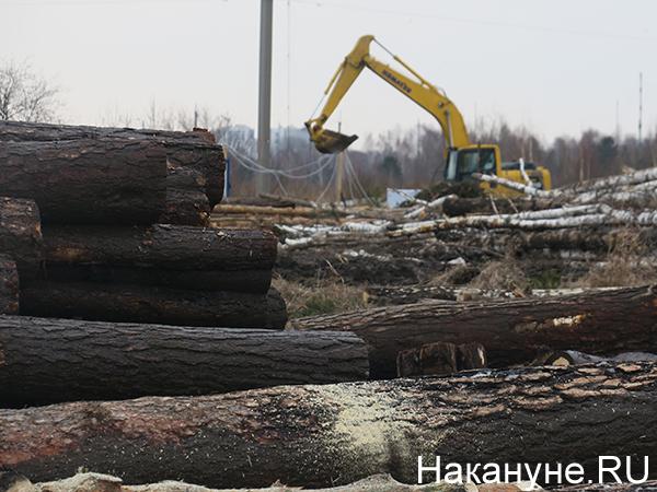 Вырубки леса под стройку логопарка в Калининском микрорайоне Екатеринбурга(2021) Фото: Накануне.RU