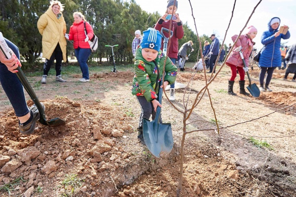 сад памяти, рмк, ребенок, посадка деревьев(2021)|Фото: пресс-служба РМК
