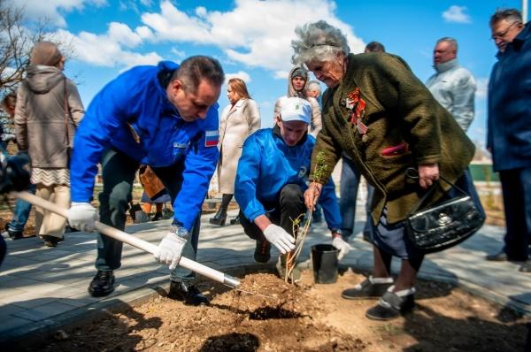 сад памяти, рмк, ветераны(2021)|Фото: пресс-служба РМК
