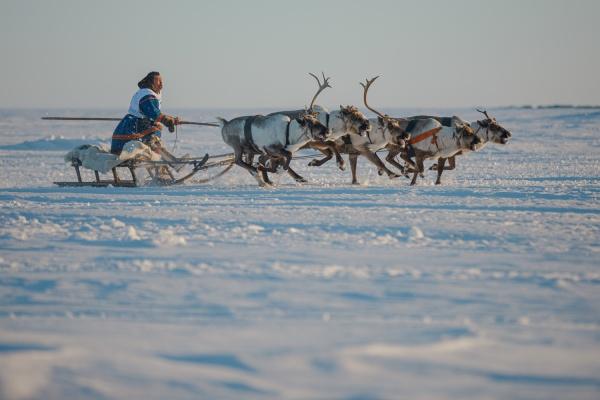 (2021)|Фото: Газпром нефть