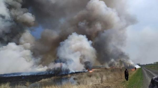 лесные пожары в Тюменской области(2021)|Фото: t.me/operativnyishtabtyumen