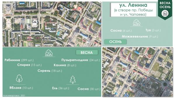 озеленение, нижневартовск(2021) Фото: пресс-служба администрации Нижневартовска