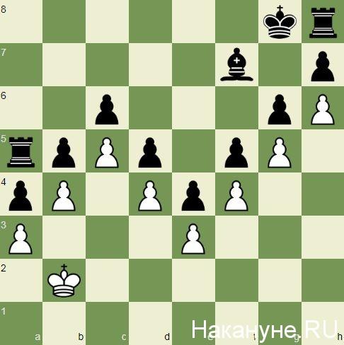 шахматы, позиция Пенроуза(2021)|Фото: Накануне.RU