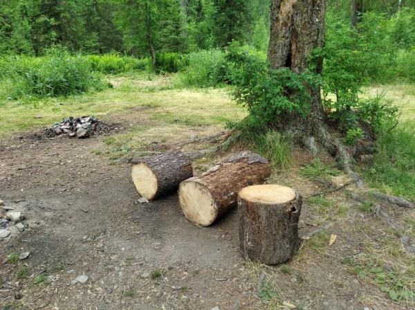 Усьвинские столбы(2021) Фото: Министерство природных ресурсов, лесного хозяйства и экологии Пермского края