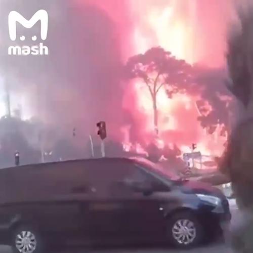 Лесные пожары в Турции(2021) Фото: Telegram / Mash