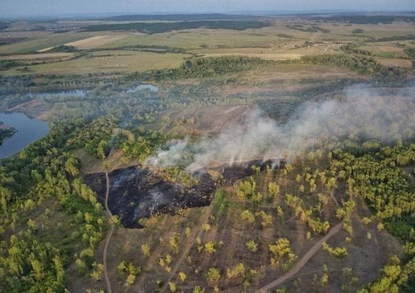 пожар в Башкирии(2021)|Фото: t.me/kushtay