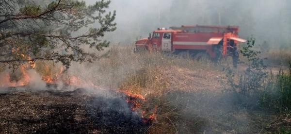 лесной пожар(2021)|Фото: t.me/kushtay