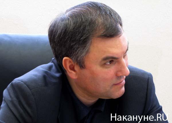 володин вячеслав(2010)|Фото: Фото: Накануне.RU