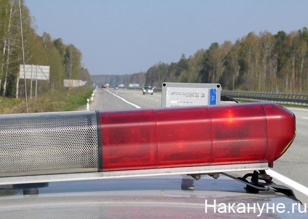 полиция дпс полицейский жезл|Фото: Накануне.ru