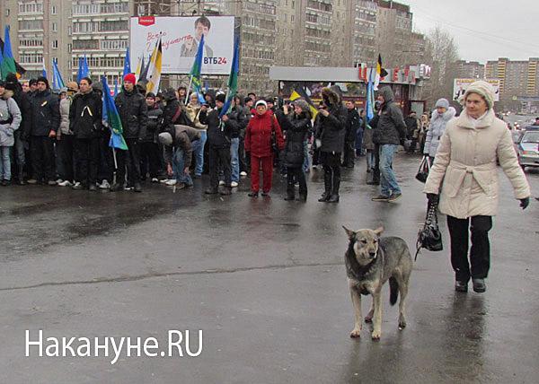 русский марш екатеринбург собака|Фото: Накануне.RU
