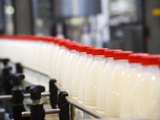 молоко производство|Фото: