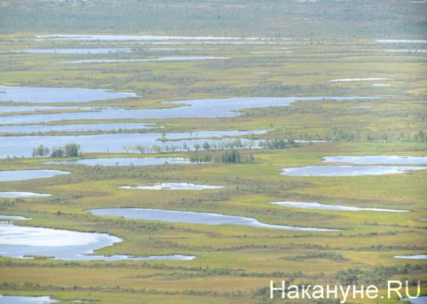 Усть-Тегусское месторождение ТНК-ВР|Фото: Накануне.RU