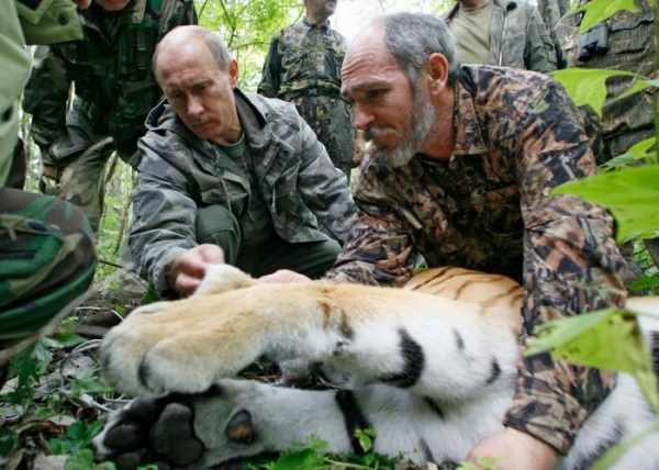 путин тигрица|Фото: