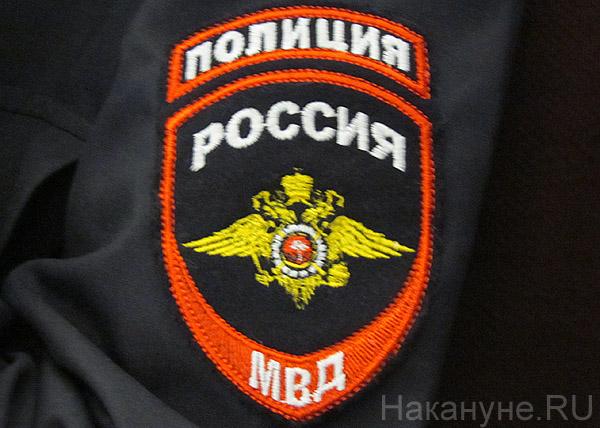 полиция значок эмблема Фото: Накануне.RU