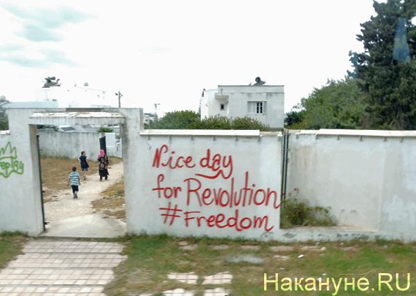Тунис, стена, арабская весна, революция|Фото: Накануне.RU