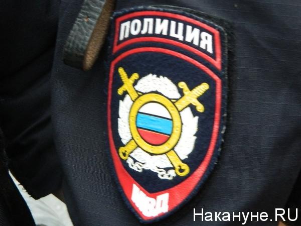 Полиция, МВД, полицейский|Фото: Накануне.RU