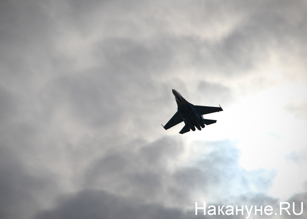Russia Arms Expo, RAE, самолет|Фото: Накануне.RU