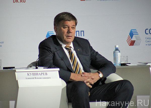 годовой отчет СОСПП, Кушнарев|Фото: Накануне.RU