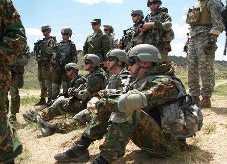 США, десант, военные, НАТО, альянс|Фото: http://www.it-ru.org/