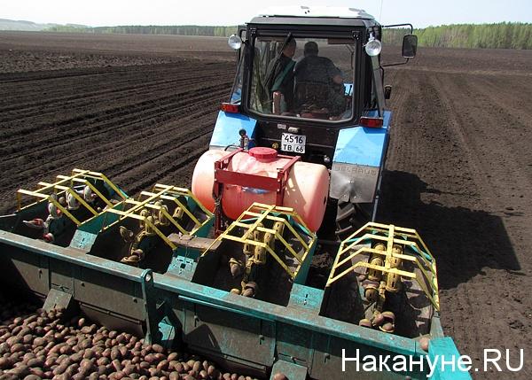 сельское хозяйство(2014)|Фото: Накануне.ru